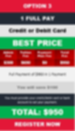 950 Option3 Full Payment Plan.png