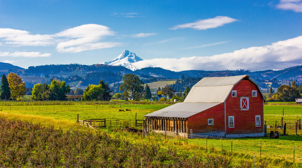 Mt Hood and Red Barn