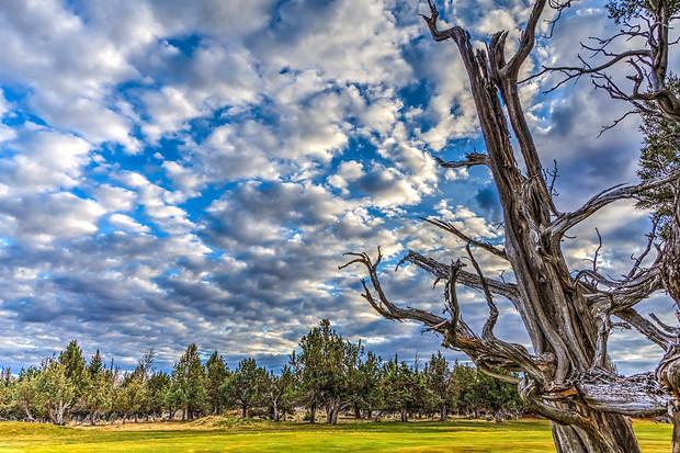 Redmond - Oregon