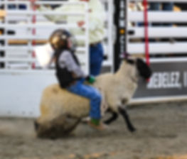 farmcity-rodeo-youth1.jpg