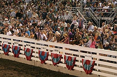 farmcity-rodeo-idaho-1.jpg