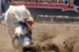 farmcity-rodeo-history1.jpg