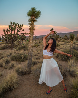 Dancing with Joshua Trees