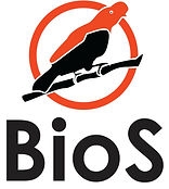 Bios Logo - cindy hurtado.jpg