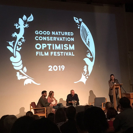 An Interview with Conservation Optimism