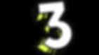 3 STRIPE.png