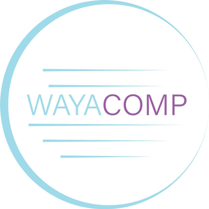 WAYACOMP 2020