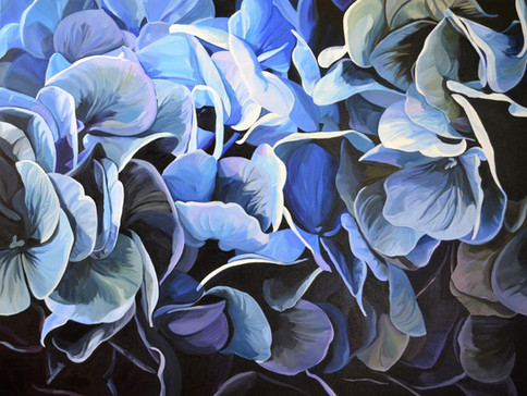 DELPHINE (Hydrangeas) - SOLD