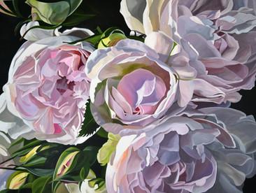 Spray Roses - SOLD