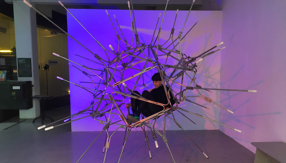 Cosmos Urchin