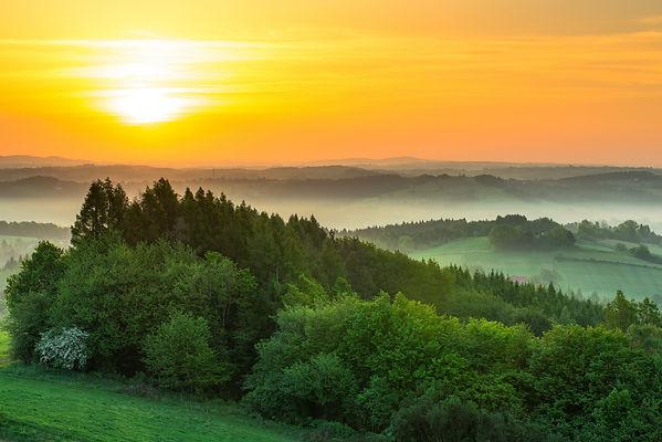 green-fields-at-sunrise-in-mist-PVWX6Q8.