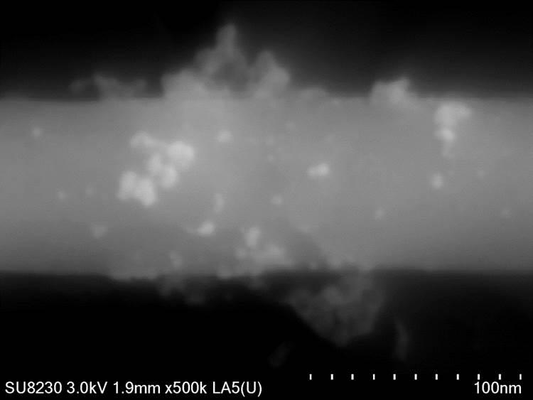CNT + PtNI nanoparticles
