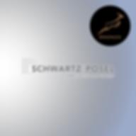 schwartz_bronze.png