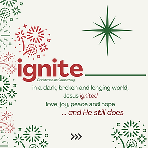 Copy of Ignite-7.png