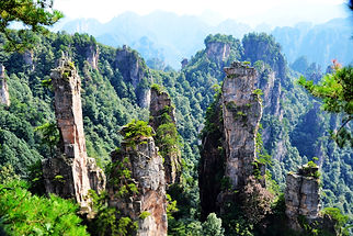 Tianzi Mountains, China, national park, nature, rainforest, beauty, travel