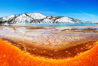 Yellowstone National Park, Wyoming, USA, America, nature, spring, travel
