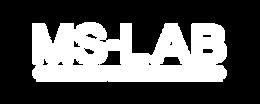 c mslab logo.png