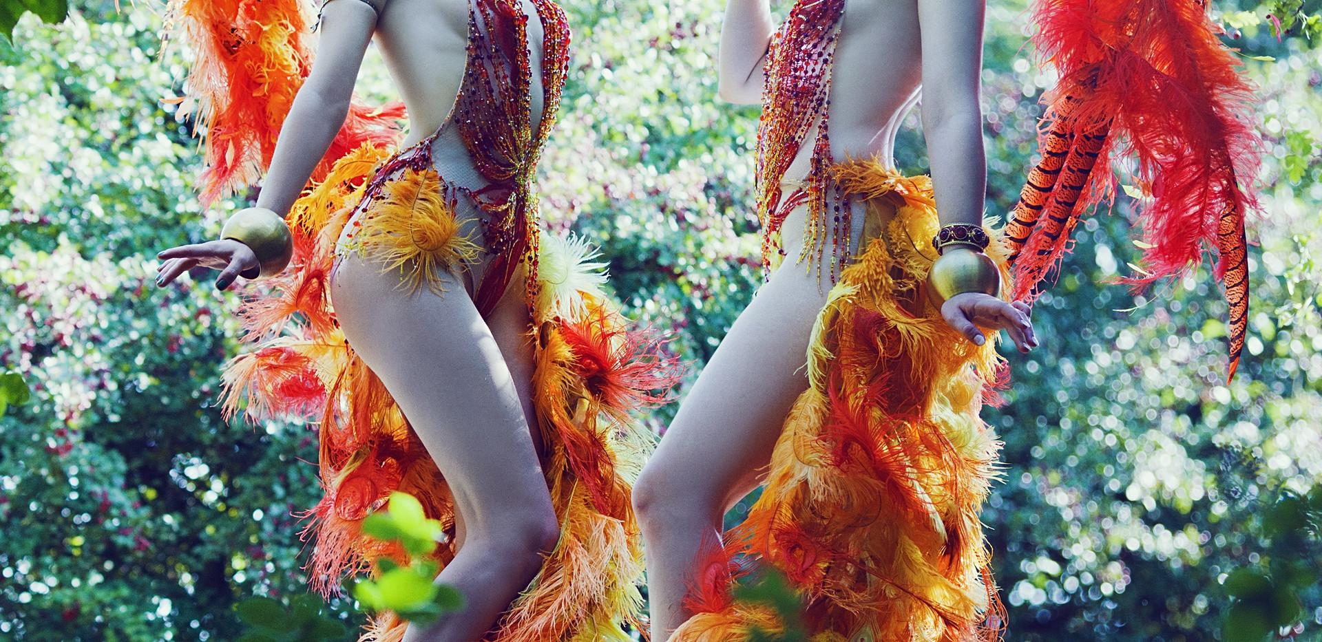 Portobello Birds
