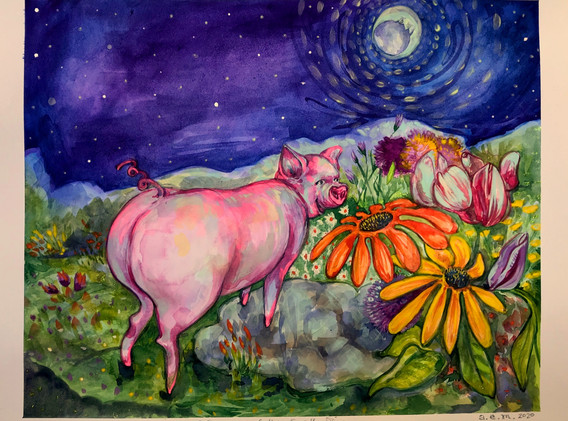 Luna the Earth Pig.jpg