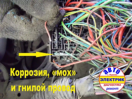 FORD FOCUS ремонт блока реле.webp