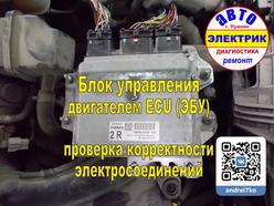 Nissan ECM (Engine Control Module) БУД.w