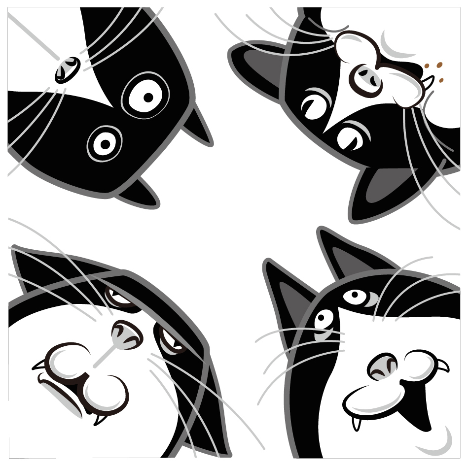 4匹の黒猫
