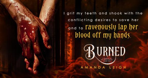 BurnedTeaser1.v2.jpg