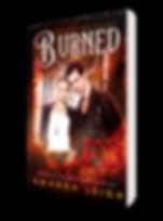 Burned.3DRender.png