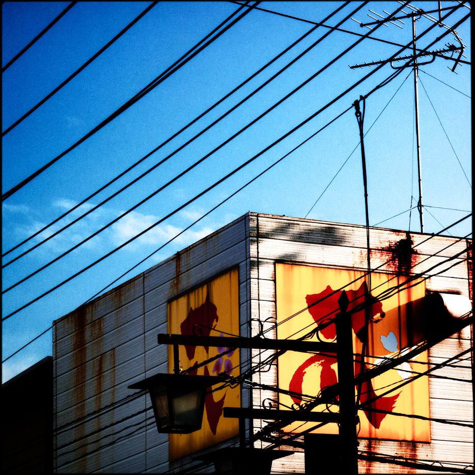 029- wires.jpg