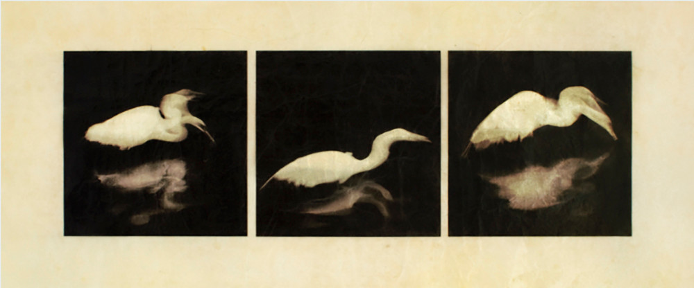 """Egret by Kimberly Chiaris for the show """"H2O"""". She explains, """"It's a digital print on Gampi paper. I applied silver leaf to the back only over the print area. Then I coated both sides several times with shellac. The silver shows through where the white areas of the print are because the Gampi becomes translucent from the shellac."""""""