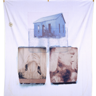 Diane Fenster: Art insight