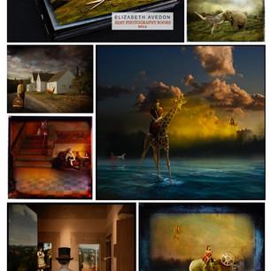 Fran Forman: creative composites