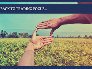 #160: BACK TO TRADING FOCUS...