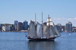 Halifax Tall Ships 2017