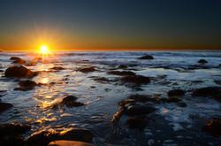 Cowbay Sunrise