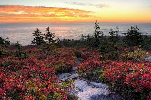 Duncan's Cove Sunrise