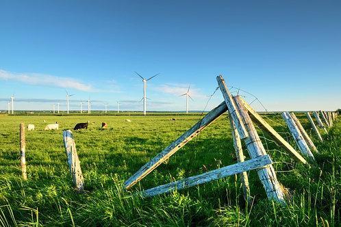 Nova Scotia Windmills