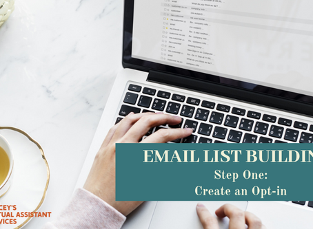 Email List Building Series: Step 1 - Create an Opt-In