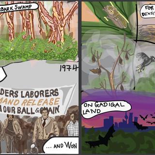 Paperbarkswamp-01_edited.jpg