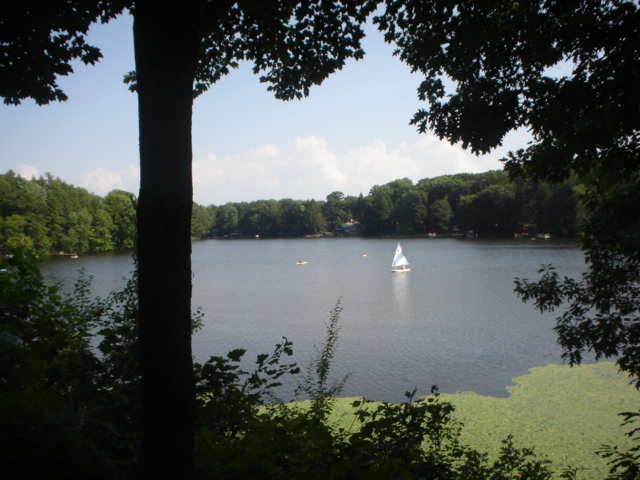 Sail boat on the lake