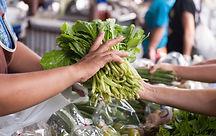 ซื้อผักอินทรีย์ตรงระหว่างผู้ลิตและผู้บริ