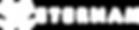 LOGO ETERNAM 2018 - Longueur Blanc.png