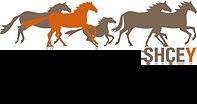 Logo_SHCEY 2.png