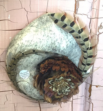Pheasant wall plague