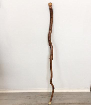 Mesquite Cane
