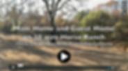 Screen Shot 2019-01-18 at 11.01.30 AM.pn