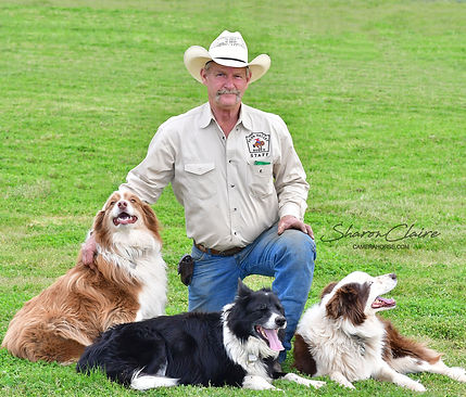 Dave Summers and Border Collies