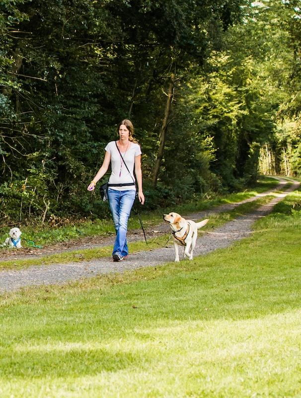 Die Leine eines leinenführigen Hundes braucht man gar nicht in der Hand halten, sondern kann sie sich z.B. auch umhängen ...