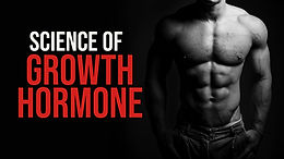 Physiological role of somatostatin on growth hormone regulation in humans