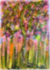 IMG_3134_edited_edited_edited.jpg